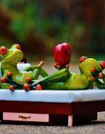 Frog Vorschaubild