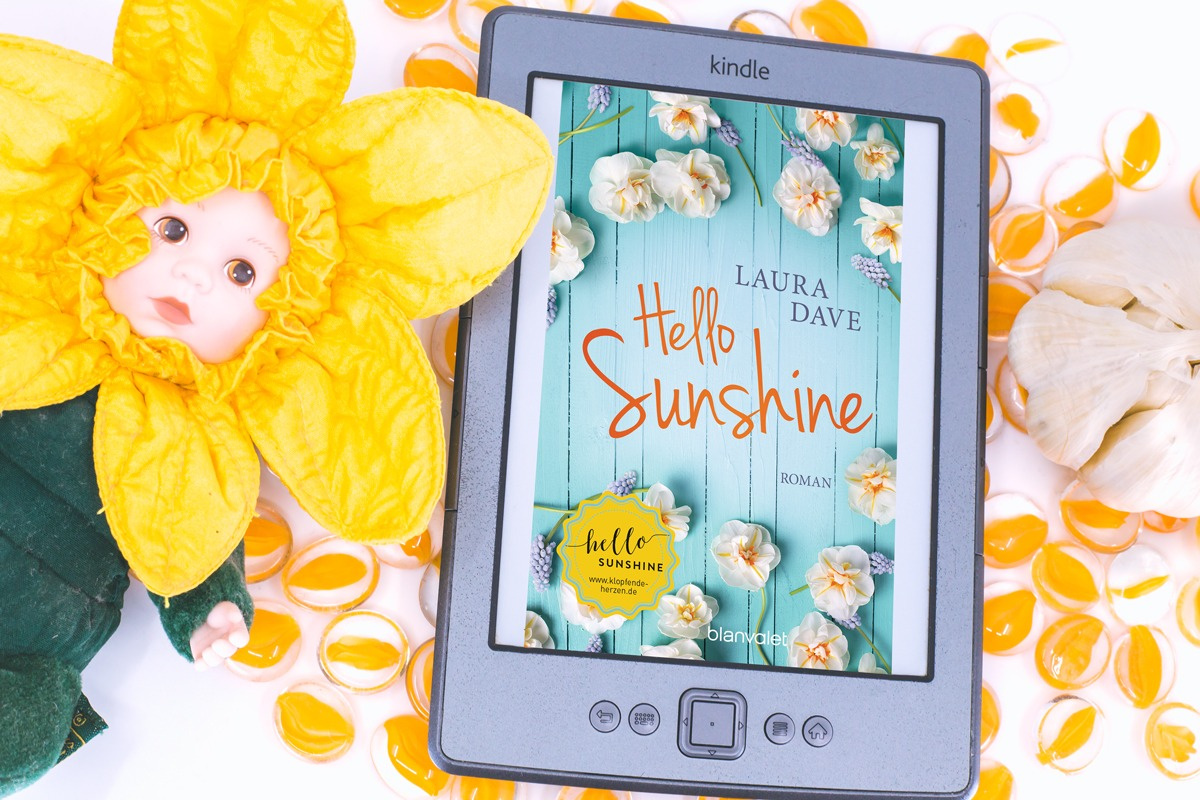 Hello Sunshine – Laura Dave