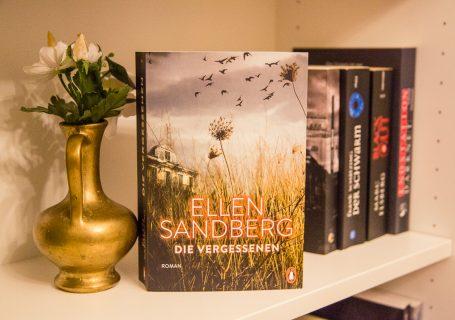 Die Vergessenen - Ellen Sandberg