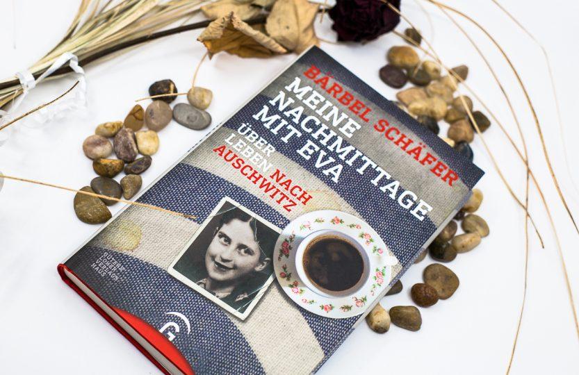Meine Nachmittag mit Eva: Über Leben nach Auschwitz - Bärbel Schäfer