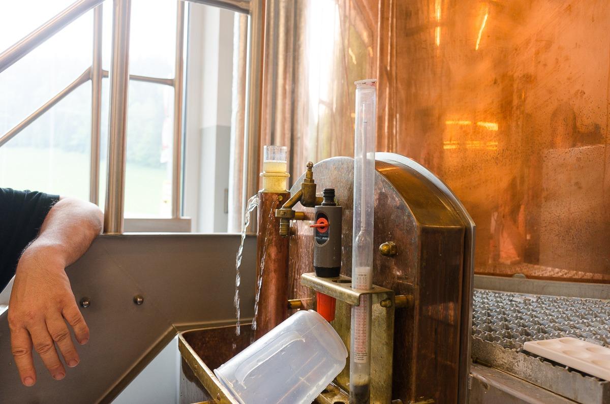 Die Stammwürze des Biers wird bestimmt