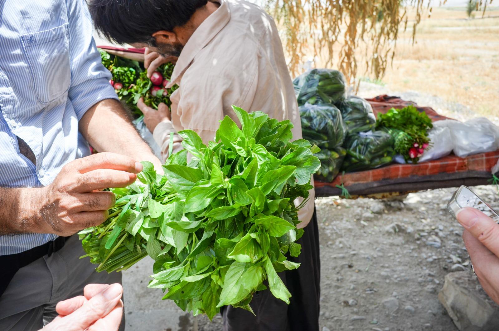 Persischer Salat im Iran