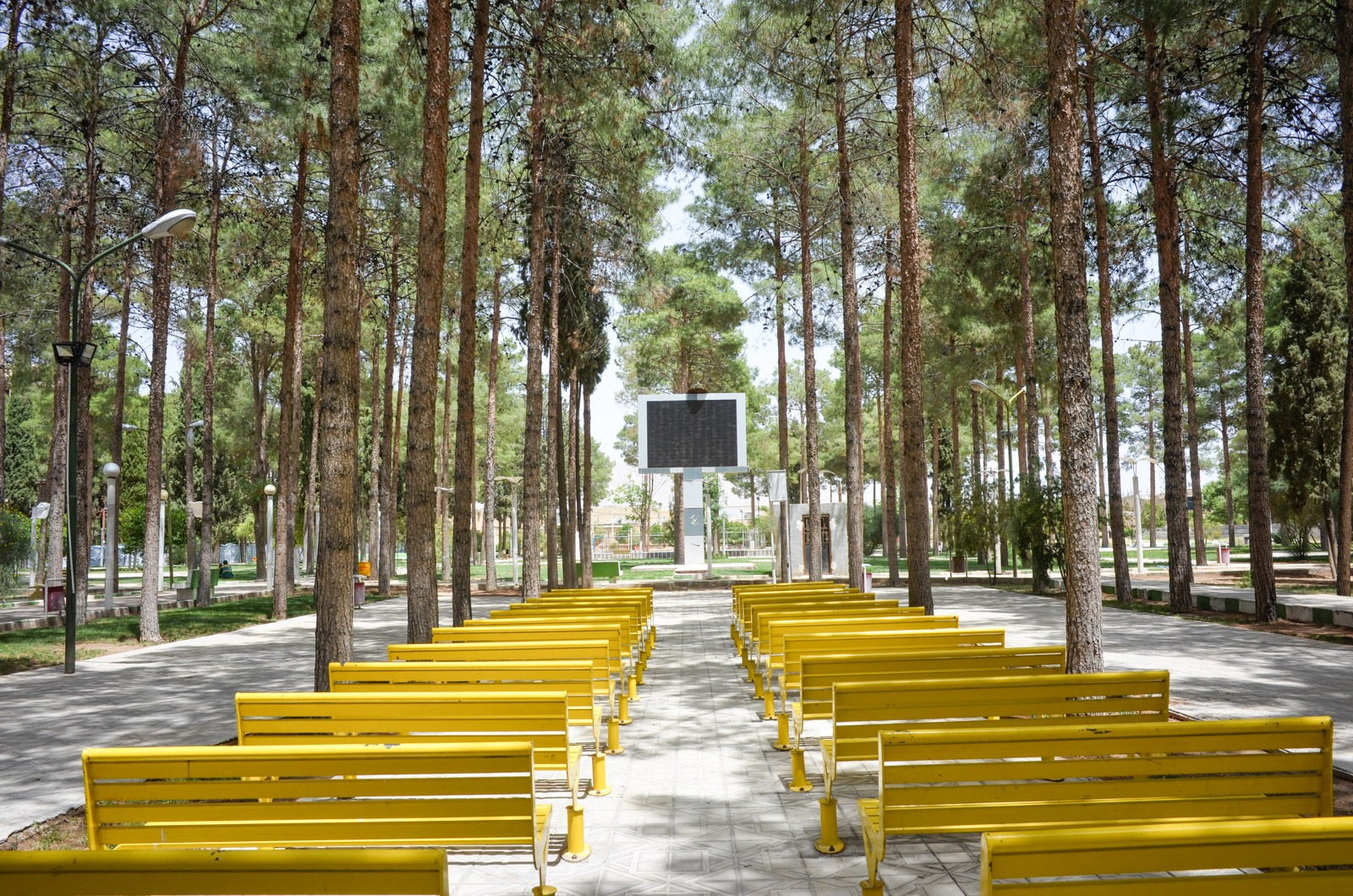 Picknick im Kino im Park von Neyriz