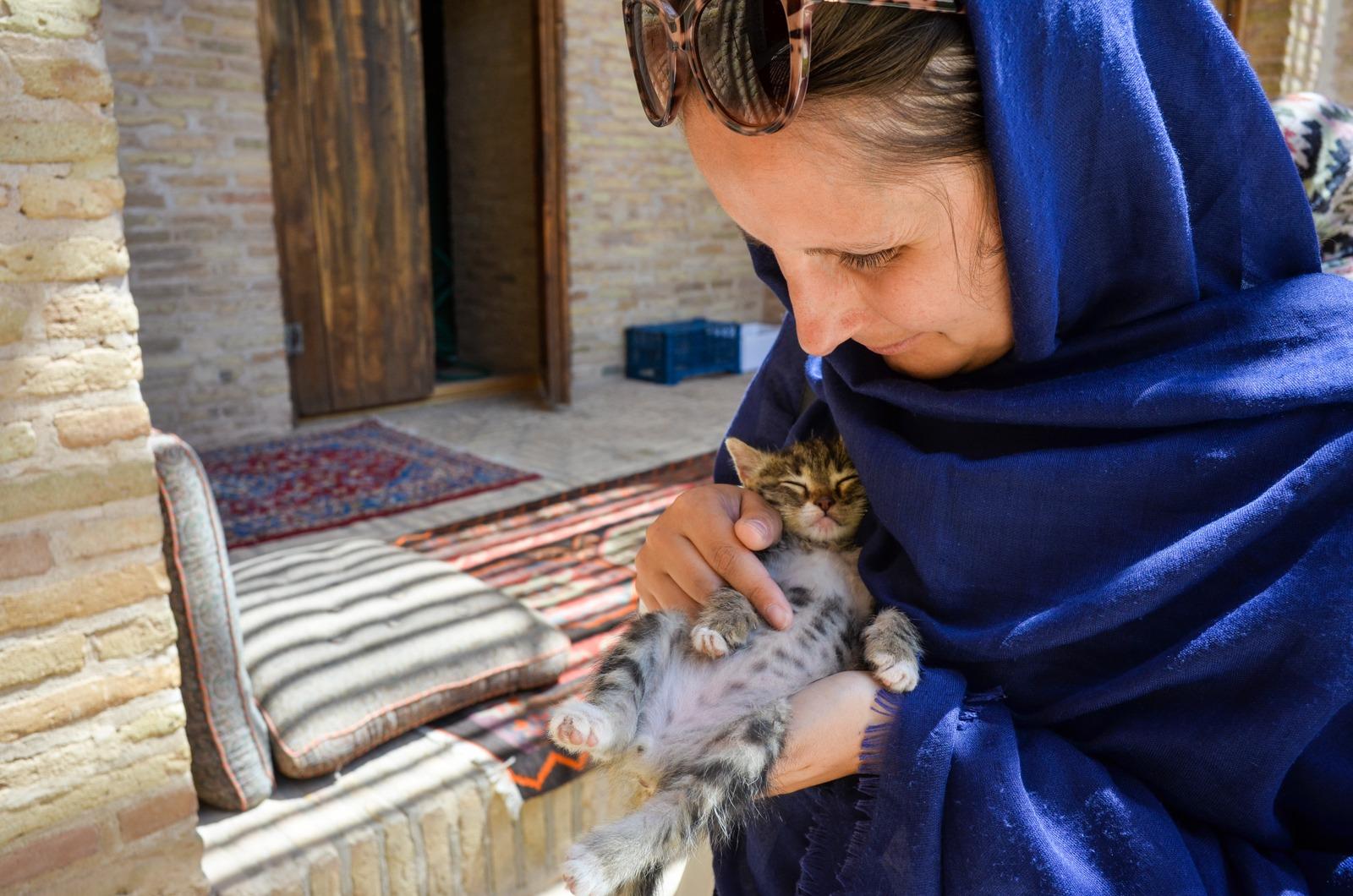 Katzenbaby in der Karawanserei im Iran