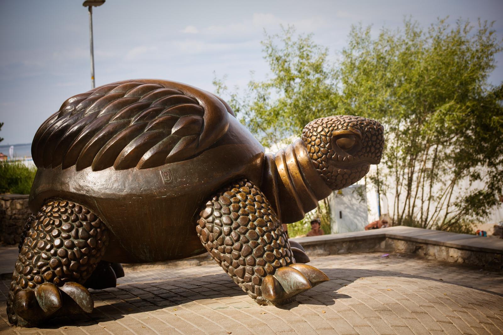 Die Schildkröte Brunurupucis
