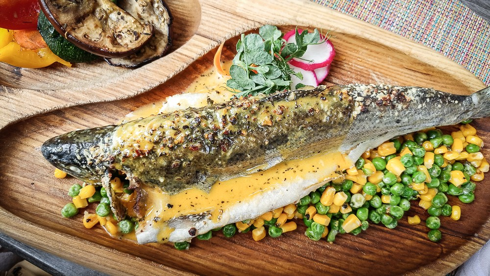 Cemodans Fisch
