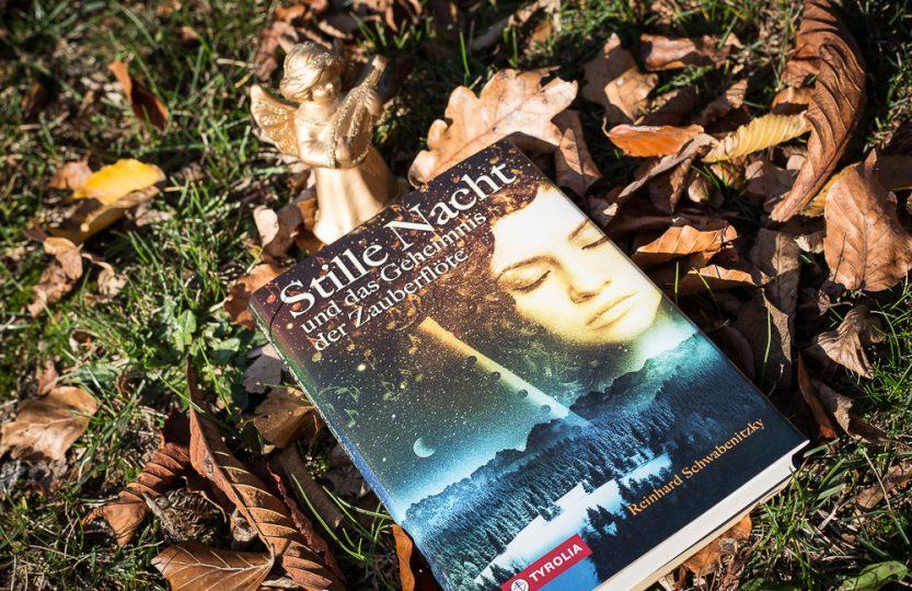 Stille Nacht und das Geheimnis der Zauberflöte - Reinhard Schwabenitzky