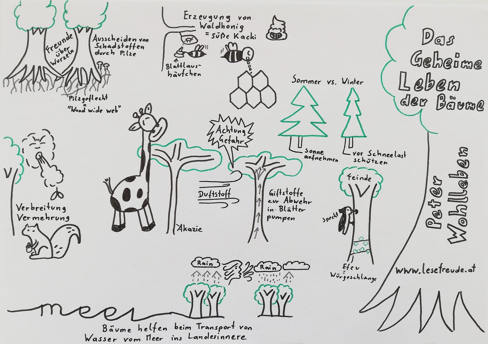 """A Book A Page - """"Das geheime Leben der Bäume"""""""
