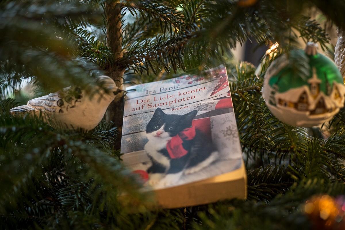 Die Liebe kommt von Samtpfoten - Ira Panic - Weihnachten