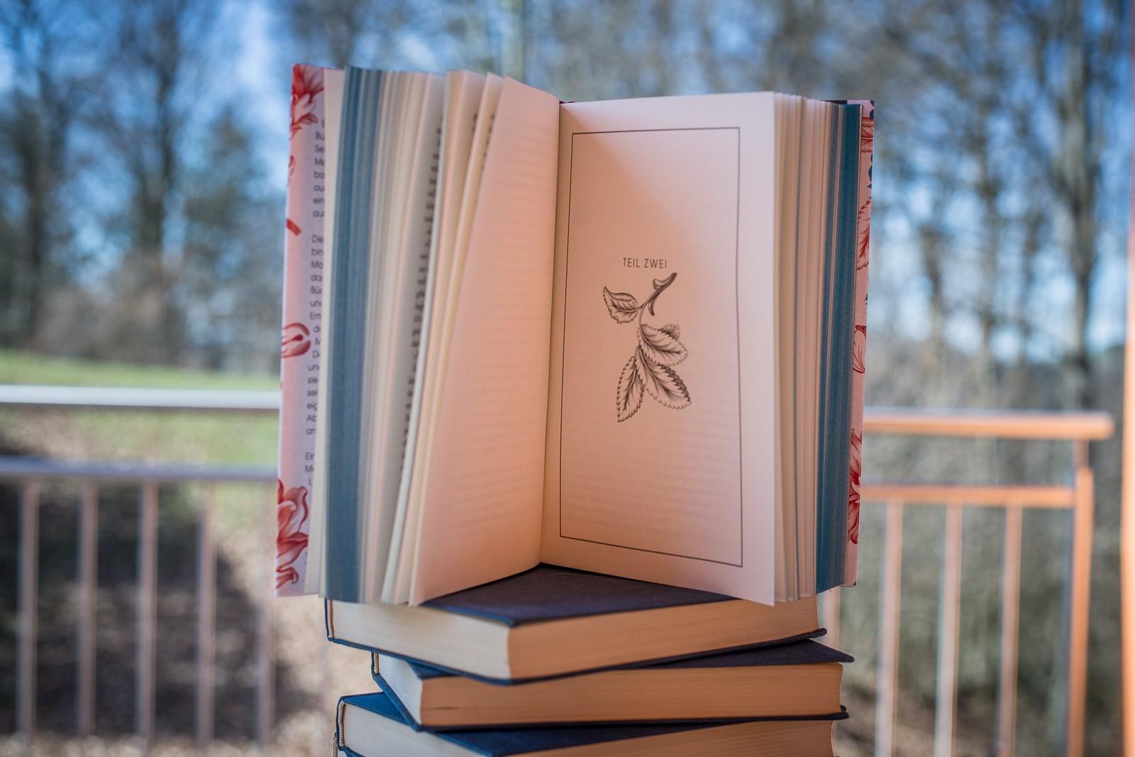 Die verborgenen Stimmen der Bücher - Bridget Collins - nächstes Kaptiel