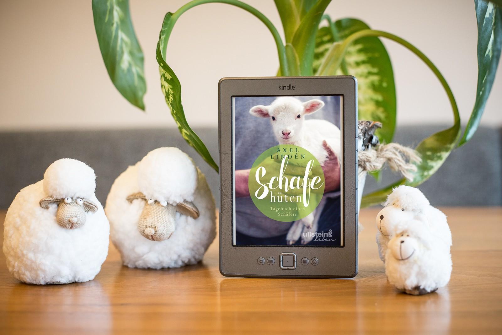 Schafe hüten - Alex Linden