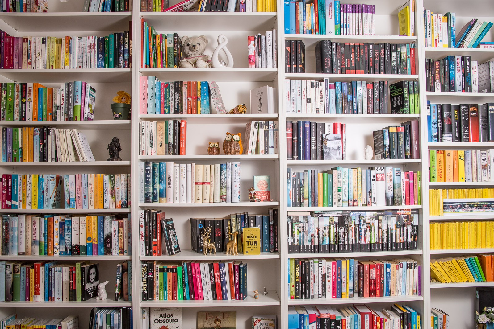 Shelfie - Mein Bücherregal